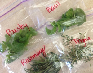 Preparing my herbs for refrigeration.