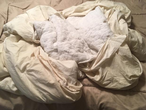 a-blanket-named-sophie